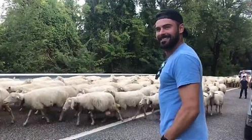 zac-efron-pecore-sardegna-770x430
